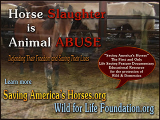 horses don t deserve slaughter Don't allow the slaughter of wild horses on rangelands posted by  i agree that horses deserve to live humanely and should not be allowed to starve or die of .