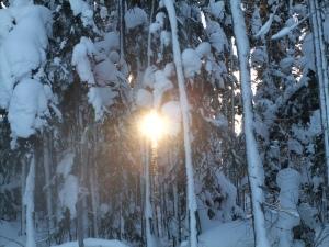 Dec 19 2012 032