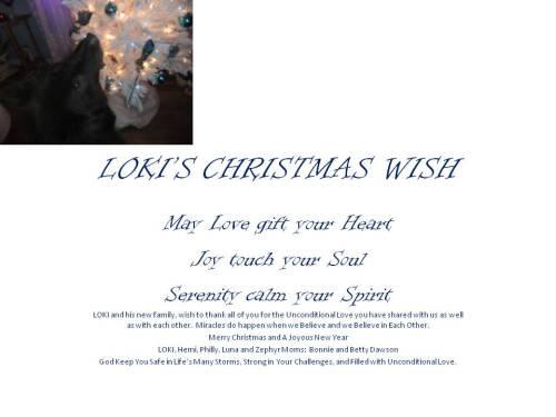 LOKI'S CHRISTMAS WISH