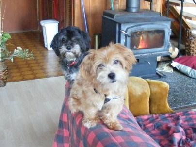 Leroy & Lulu
