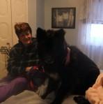 Good boy on mom's bed Oct 2013 NC